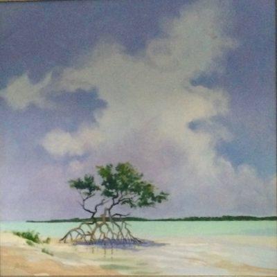 Mangrove Series #1